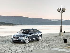 When to service the Octavia?